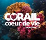 Corail (Aquarium de Paris)